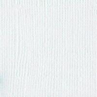 10-1001 Bazzill White 309001