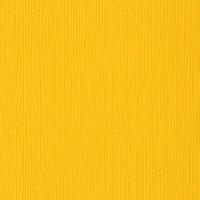 3-339 Desert Marigold 301055