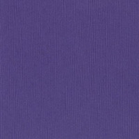 6-657 Purple Pizzazz 300909