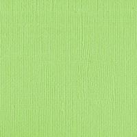 205531 Green Melon -NEW