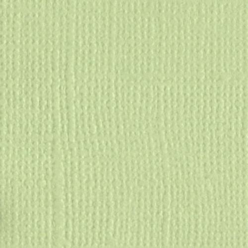 5-506 Aloe Vera 309013 -sub with Spring Bud 205515
