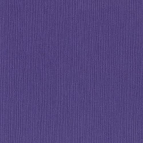6-657 Purple Pizzazz 300909