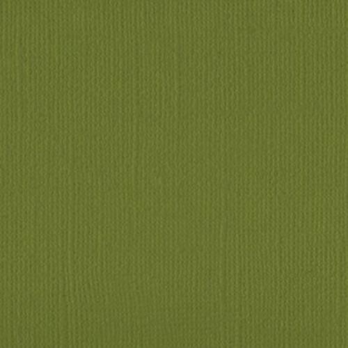 205520 Olive Tree - OOS