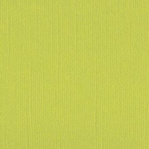 205563 Lime