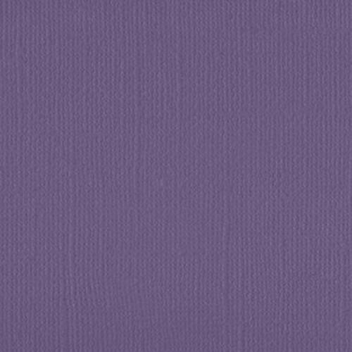 206645 Violet