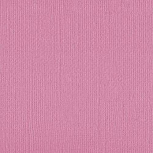 101122 Pink Galah