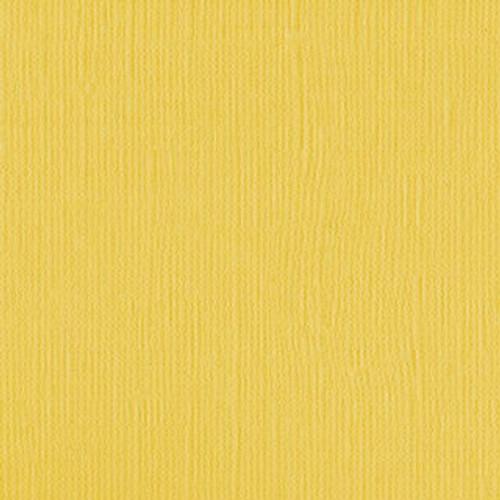 204433 Daffodil