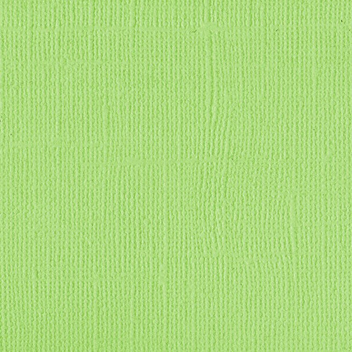 205531 Green Melon -NEW