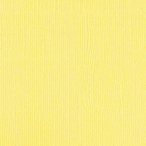 204428 Canary - NEW