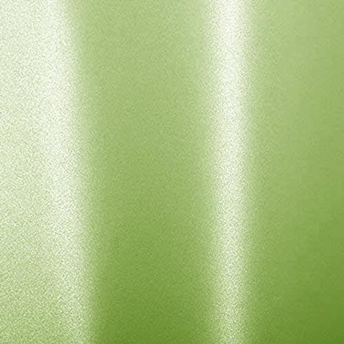 900515 Metallic Paper Envy