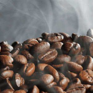 Best Coffee Beans 101