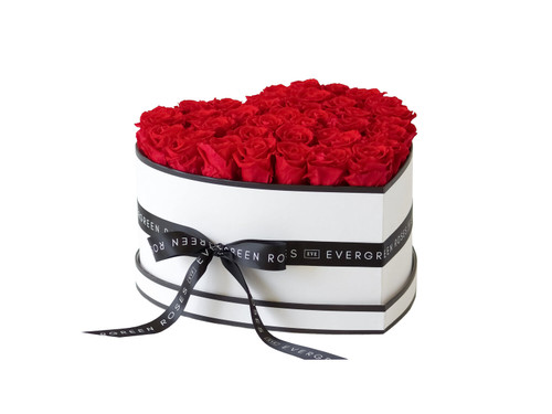 Thirty-eight Preserved Roses - Passion