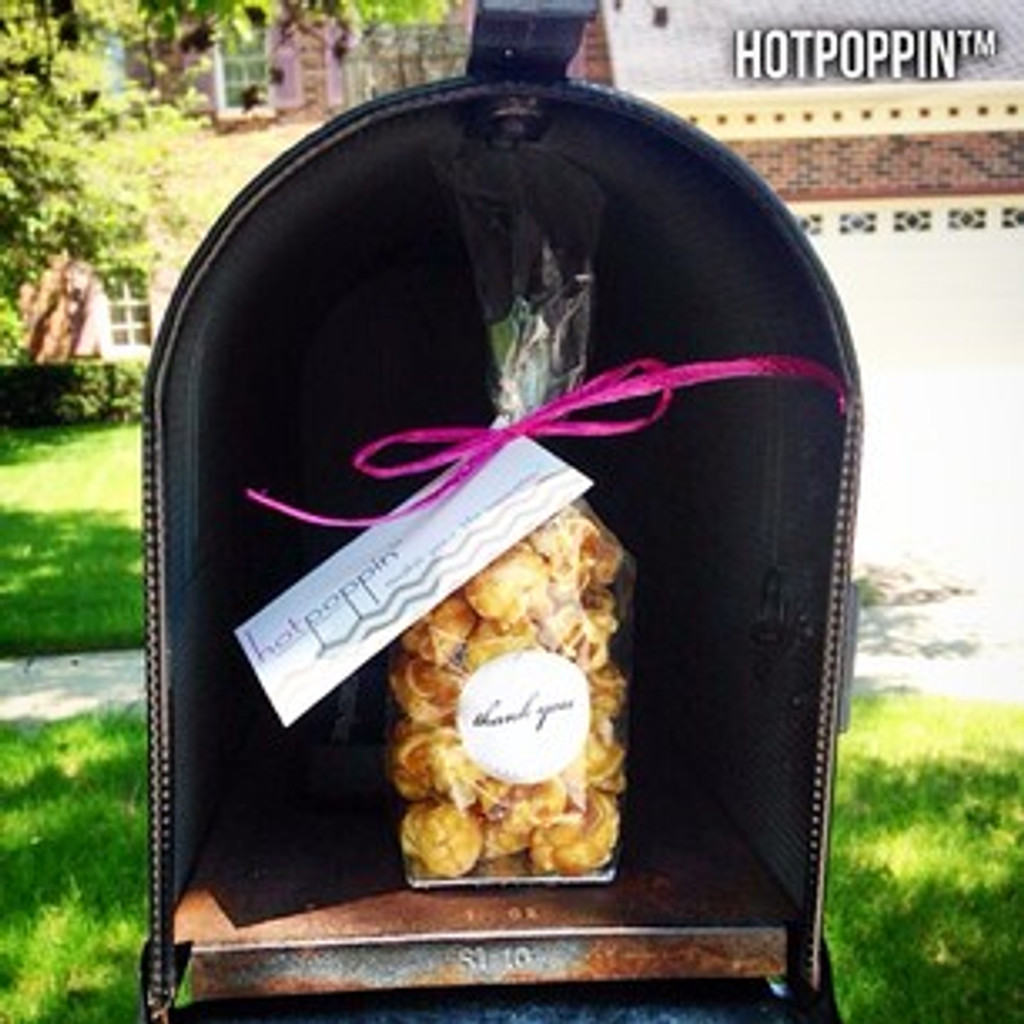 HotPoppin Gourmet Popcorn | The Mini Bag | 1 cup