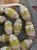 Green African Fancy Glass Beads