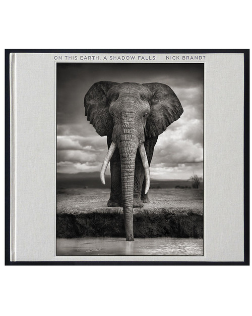 Nick Brandt: On This Earth, A Shadow Falls View Product Image