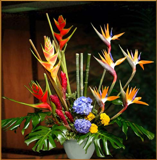 Exotic Arrangement
