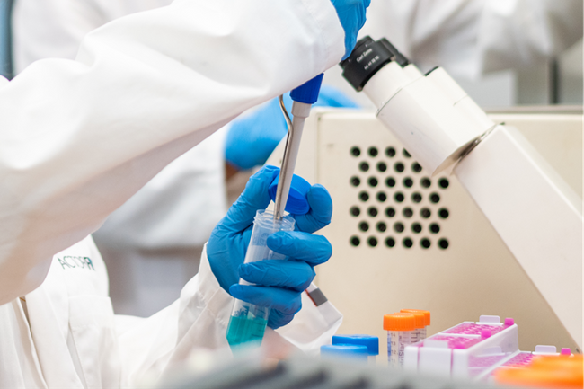 Adipose Derived Stem Cells vs. Fibroblasts