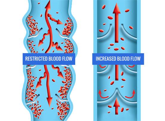 Increased Blood Flow