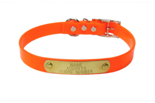 "Warner Brand Dayglo dog collar in solid neon orange with 3/4"" width."