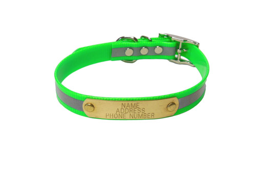 "Warner Brand reflective dayglo dog collar in 3/4"" width for smaller dogs in green."