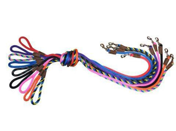 all snap lead leashes