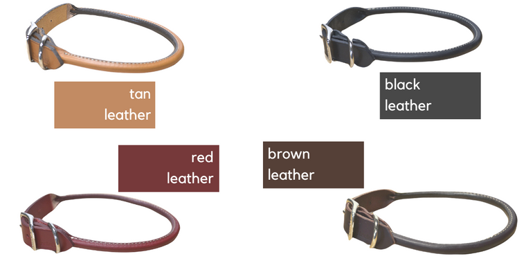 Rolled Leather Dog Collar (made in USA)