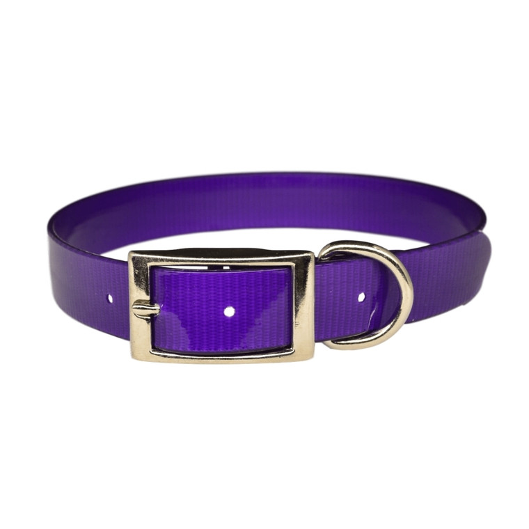 Warner Brand solid color dayglo dog collar in purple.