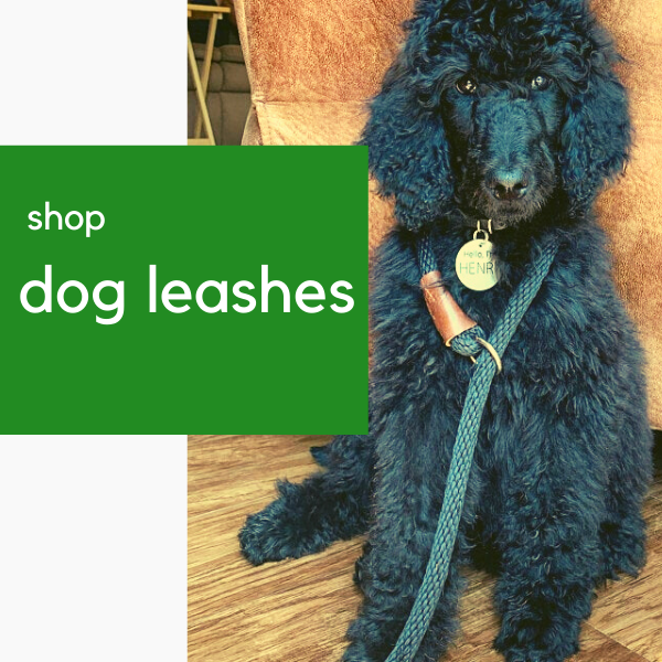 rope dog leashes, chain dog leashes, and leather dog leashes