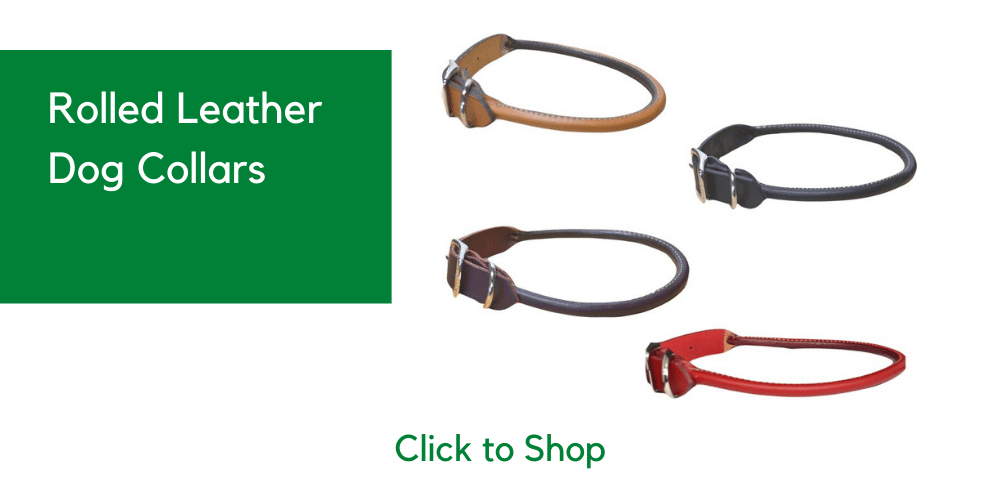 welcome image and link to our round collars