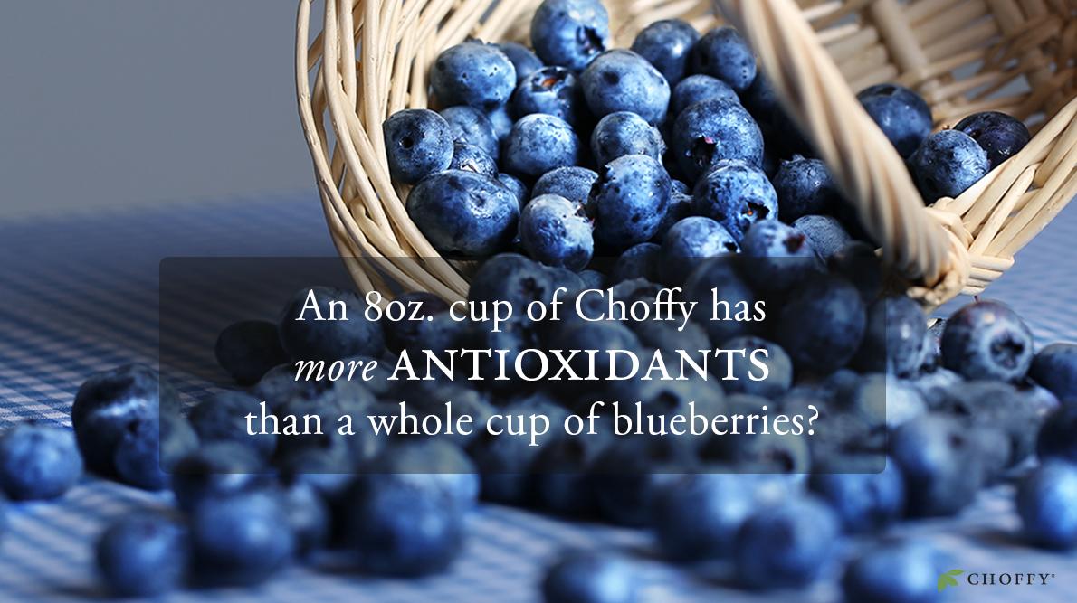 antioxidantpicdone.jpg