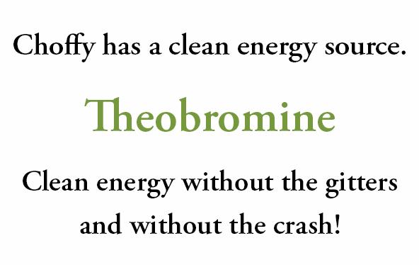 cleanenergytext1.jpg