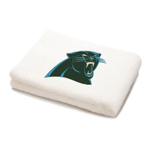 Carolina Panthers Pro football NFL Machine Embroidery Designs 2 Sizes