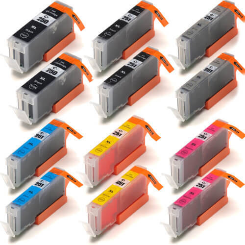 Canon PGi-250B-Cli-251BCMYG 12-pack replacement
