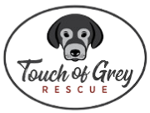 Touch of Grey Rescue