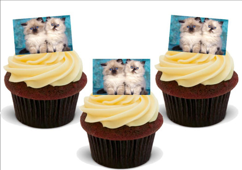 BEAUTIFUL FLUFFY LITTLE KITTENS for Cat Lovers! 12 Edible Standup Premium Wafer Cake Toppers