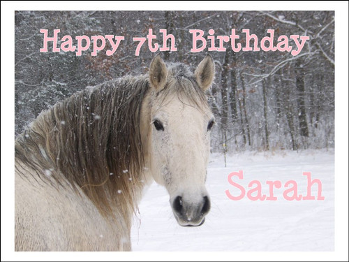 PERSONALISED WINTER HORSE SCENE  BIRTHDAY A4 Icing Cake Topper