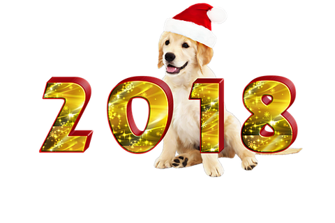 What The Year Of The Dog Will Bring You?
