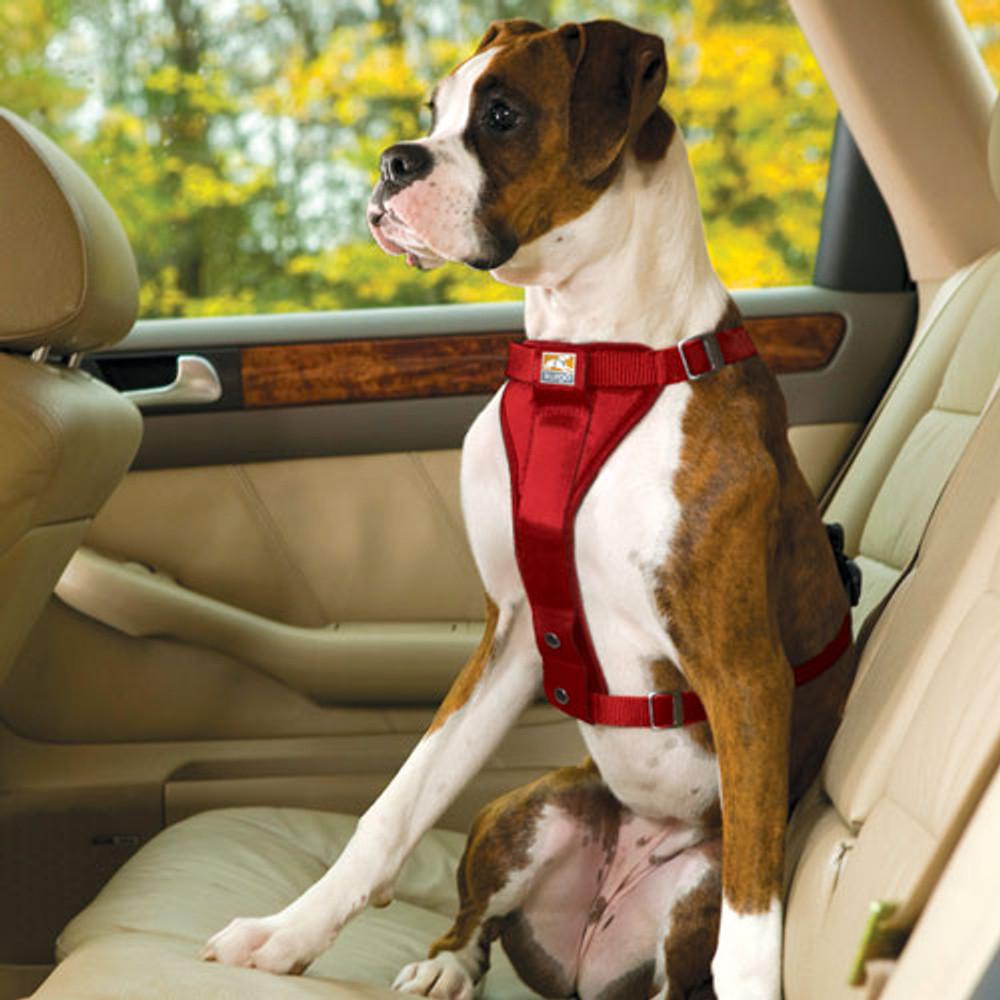 Dog Car Harness >> Kurgo Enhanced Strength Tru Fit Dog Car Harness Red