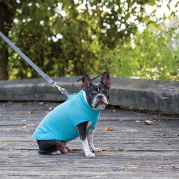 RC Pet Polaris Dog Sweaters