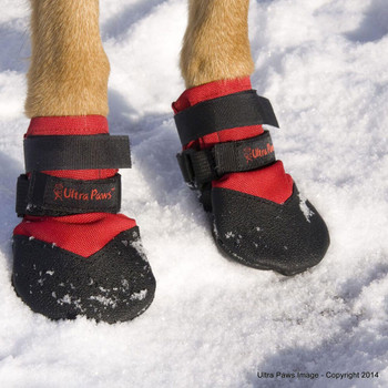 Ultra Paws Durable Dog Boots in the Snow