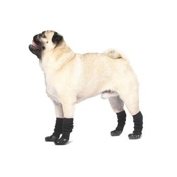 Canada Pooch Slouchy Socks on Black