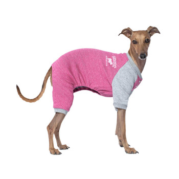 Canada Pooch Frosty Fleece Sweatsuit in Raspberry