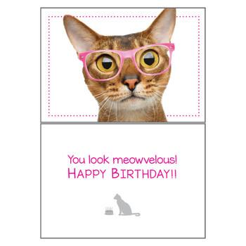 Dog Speak Birthday Card - Cat Meowvelous