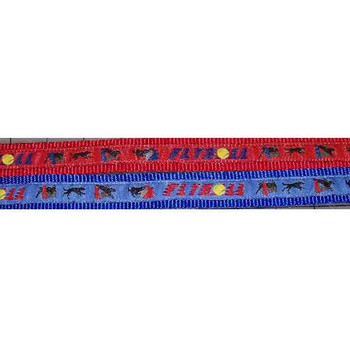 Flyball Collar and Lead Set