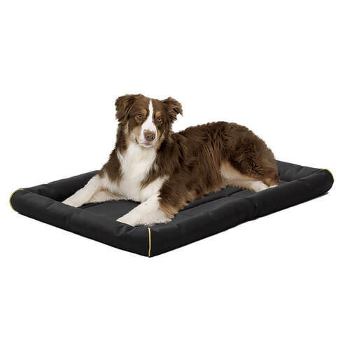 MidWest Quiet Time Maxx Beds BLACK