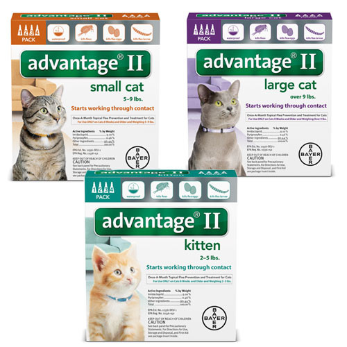 K9 Advantage II for Cats - 4 month supply