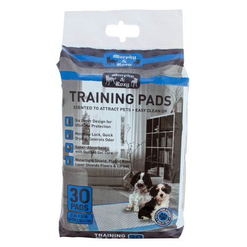 Murphy and Roxy Dog Training Pads