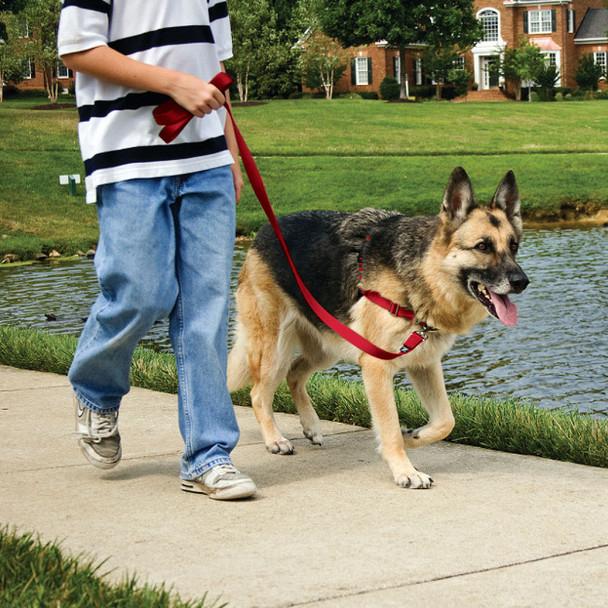 PetSafe Easy Walk No Pull Dog Harness