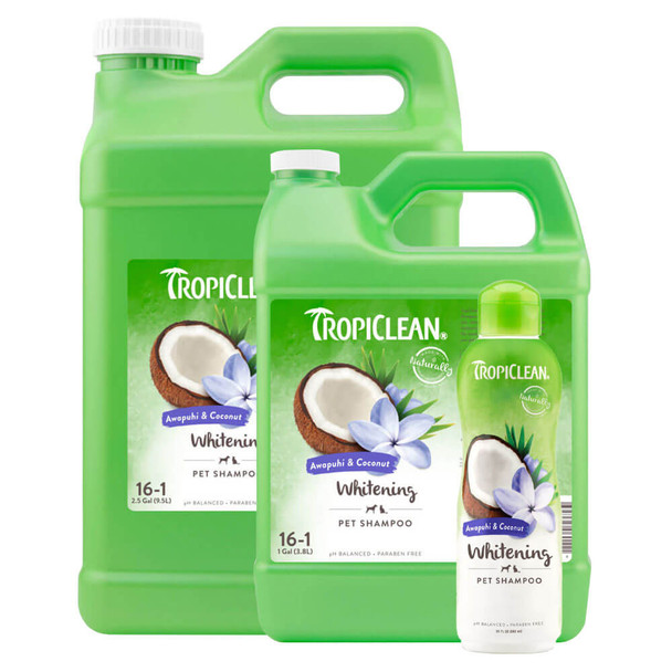 TropiClean Awapuhi & Coconut Whitening Shampoo for Pets