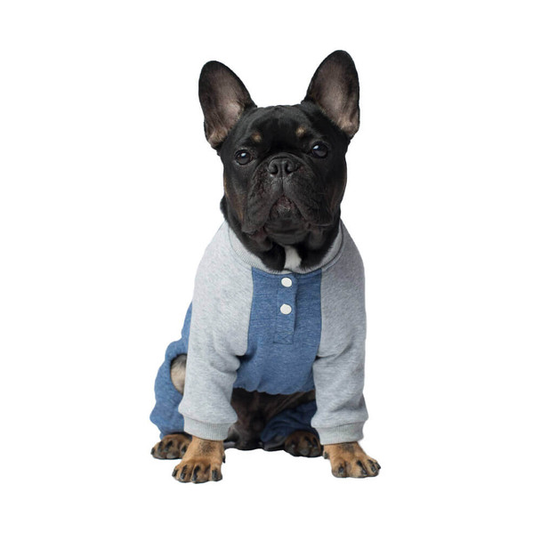 Canada Pooch Frosty Fleece Sweatsuit in Blue